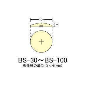 画像2: 基準点鋲(真鍮製)
